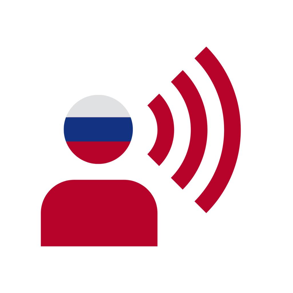 Russian Accountants