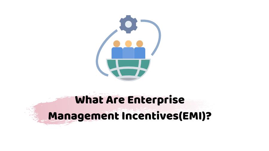 enterprise management incentive