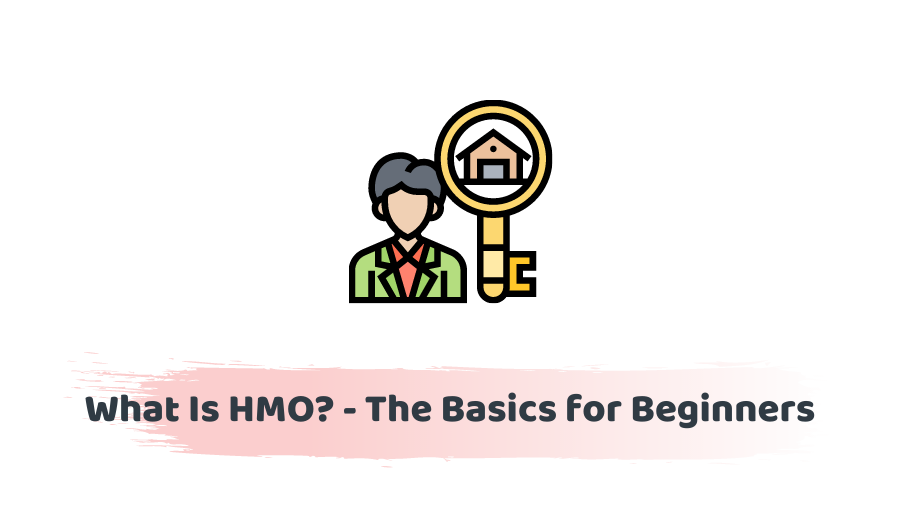 What is HMO