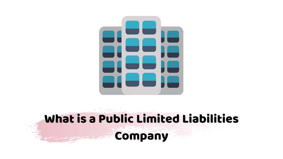 public limited laibilities company