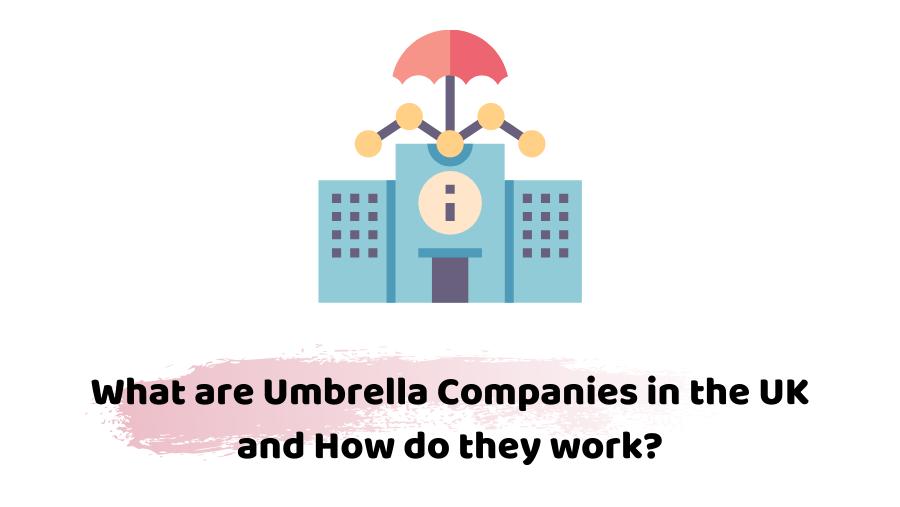 umbrella companies in the uk